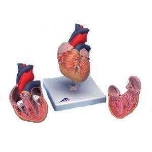 Klassik-Herz, 2-teilig G08